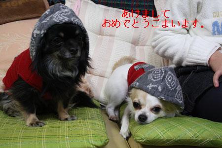 IMG_4858・2 コピー