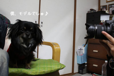 IMG_4891・2 コピー