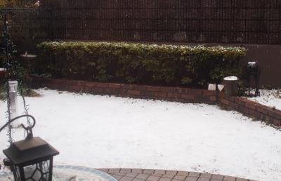 うっすら雪景色。