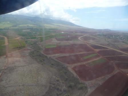 2009 HAWAII 086