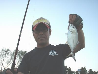 2010メッキ