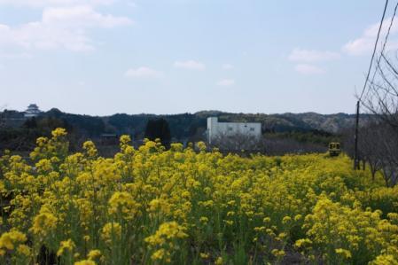 2011-3-29 いすみ鐵道 城見ヶ丘駅
