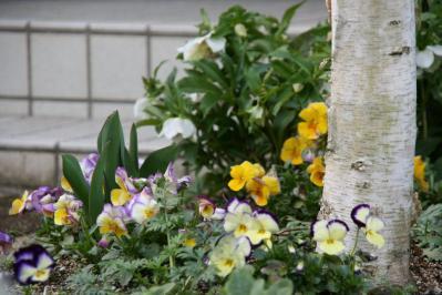 2010-03-11_20.jpg