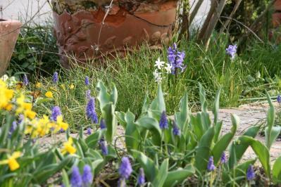 2010-03-22_26.jpg