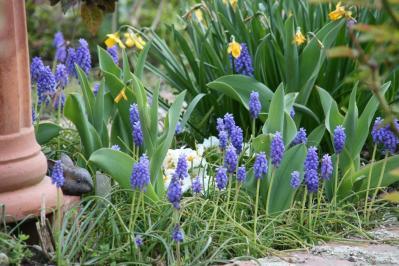 2010-04-03_15.jpg
