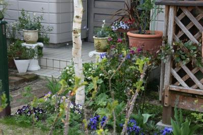 2010-04-04_31.jpg