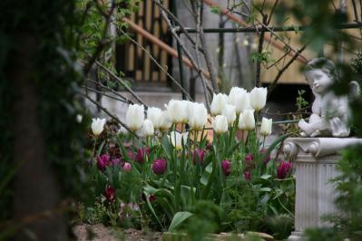 2010-04-10_79.jpg