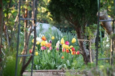 2010-04-17_32.jpg