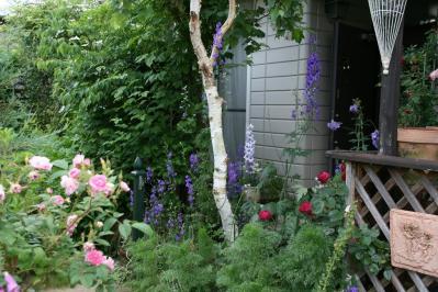 2010-06-06_05.jpg