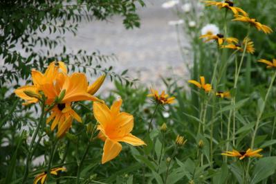 2010-06-28_03.jpg