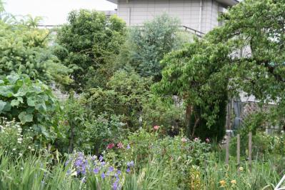 2010-07-25_06.jpg