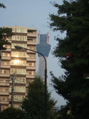 2010-08-16_74.jpg