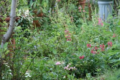 2010-09-01_08.jpg