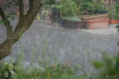 2010-09-04_09.jpg