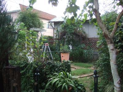 2010-09-19_07.jpg