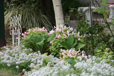 2010-10-18_03.jpg