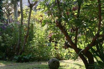 2010-11-05_06.jpg