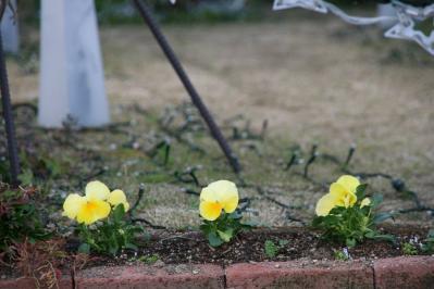 2010-12-19_15.jpg