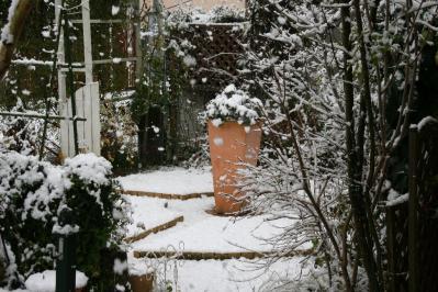 2010-12-30_21.jpg