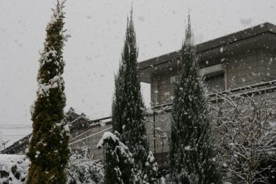 2010-12-30_46.jpg
