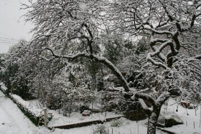 2010-12-30_54.jpg