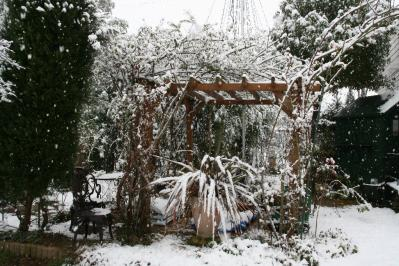 2010-12-30_55.jpg