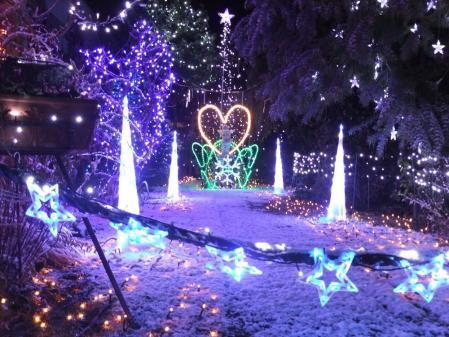 2011-01-01_104.jpg