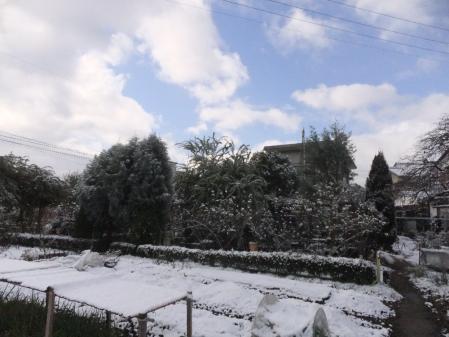 2011-01-10_04.jpg