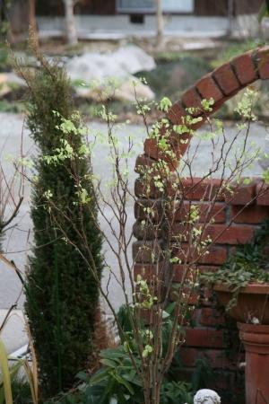 2011-01-20_00.jpg