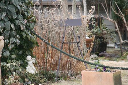 2011-01-22_05.jpg