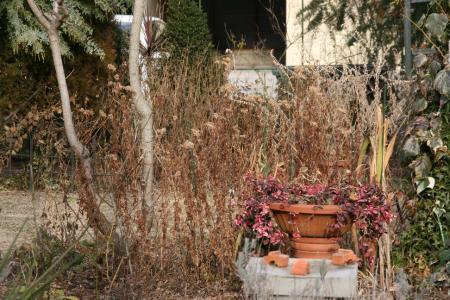 2011-01-22_11.jpg