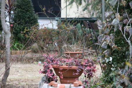2011-01-23_22.jpg