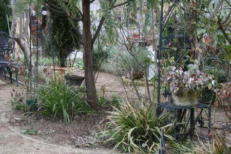 2011-01-23_30.jpg