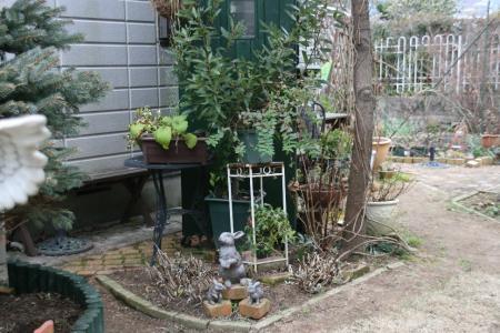 2011-01-23_33.jpg