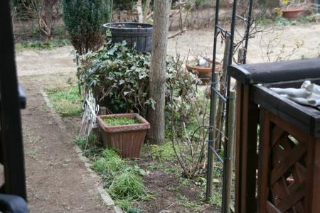 2011-01-23_51.jpg