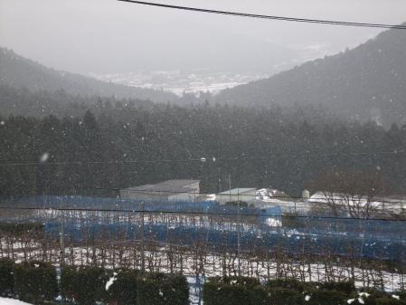 2011-01-25_08.jpg