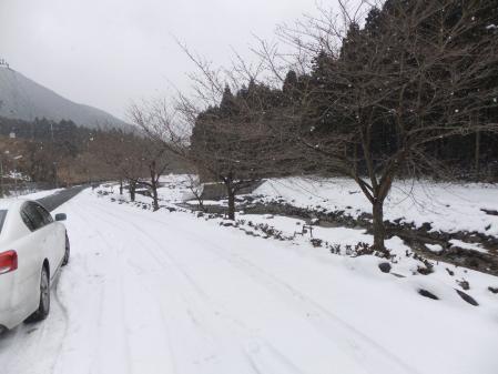 2011-01-25_10.jpg