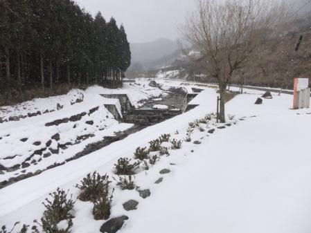 2011-01-25_14.jpg
