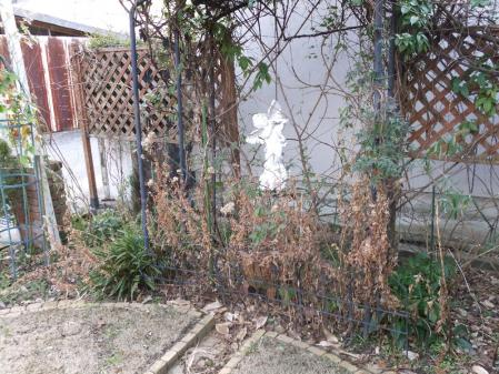 2011-01-29_10.jpg