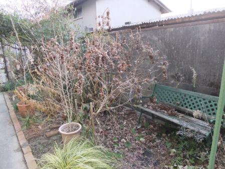 2011-01-29_12.jpg