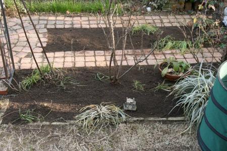 2011-02-11_37.jpg