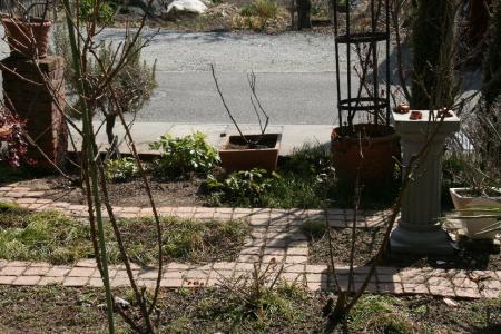 2011-02-19_01.jpg