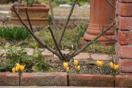 2011-03-03_17.jpg