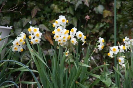 2011-03-14_27.jpg