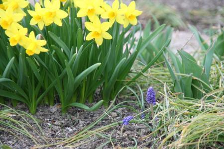 2011-03-19_27.jpg