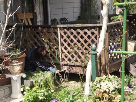 2011-03-27_50_20110329185810.jpg