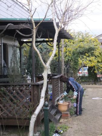2011-03-27_51.jpg