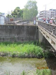 玉川上水と残堀川の交差