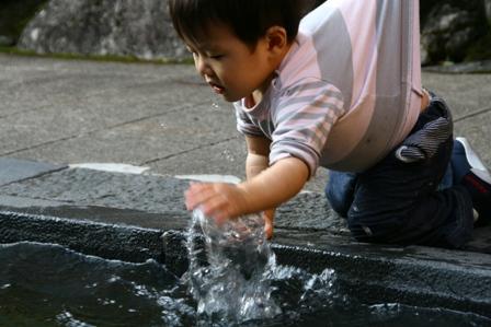 宗祇水に夢中