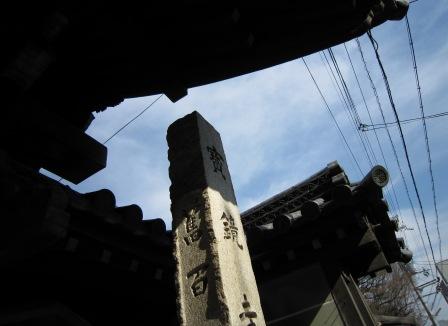 宝鏡寺に青い空がぴったりでした。